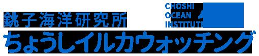 銚子の海で感動体験、イルカクジラウォッチング